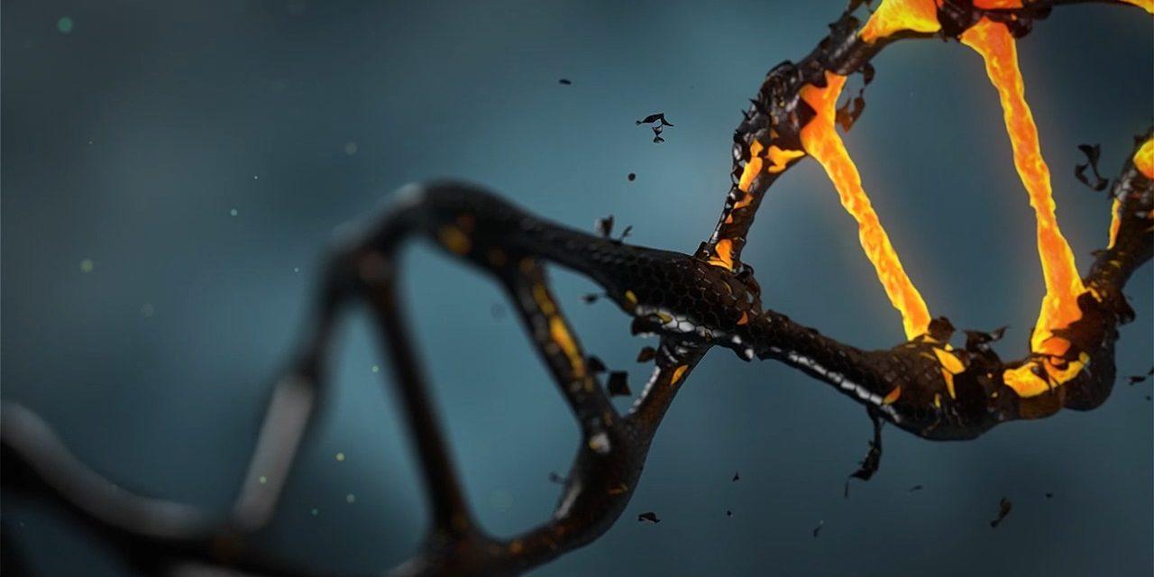 Dem Wiener Derby fehlt die Wiener DNA